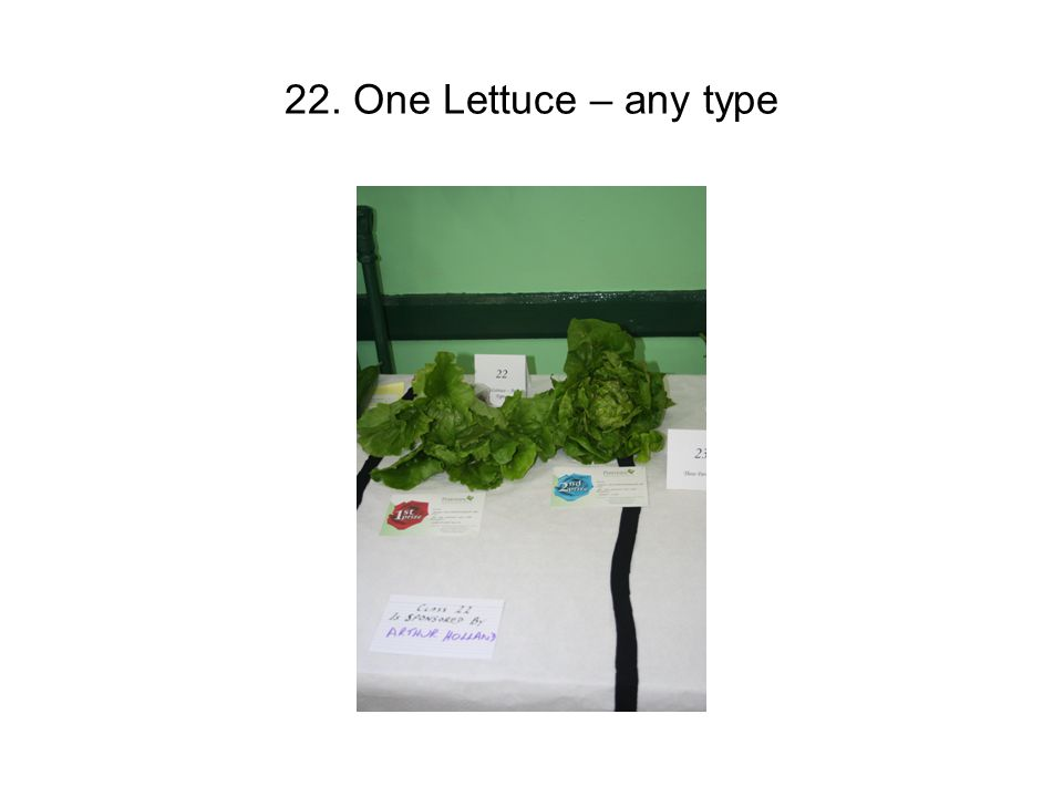 22. One Lettuce – any type