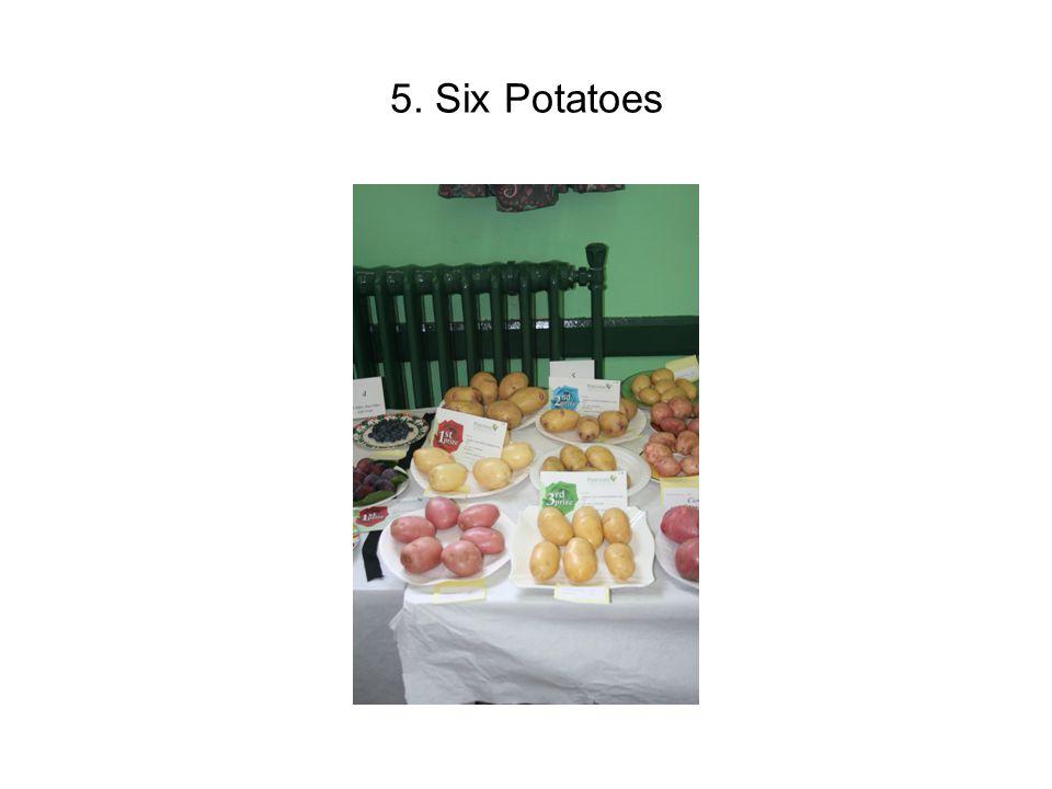 5. Six Potatoes