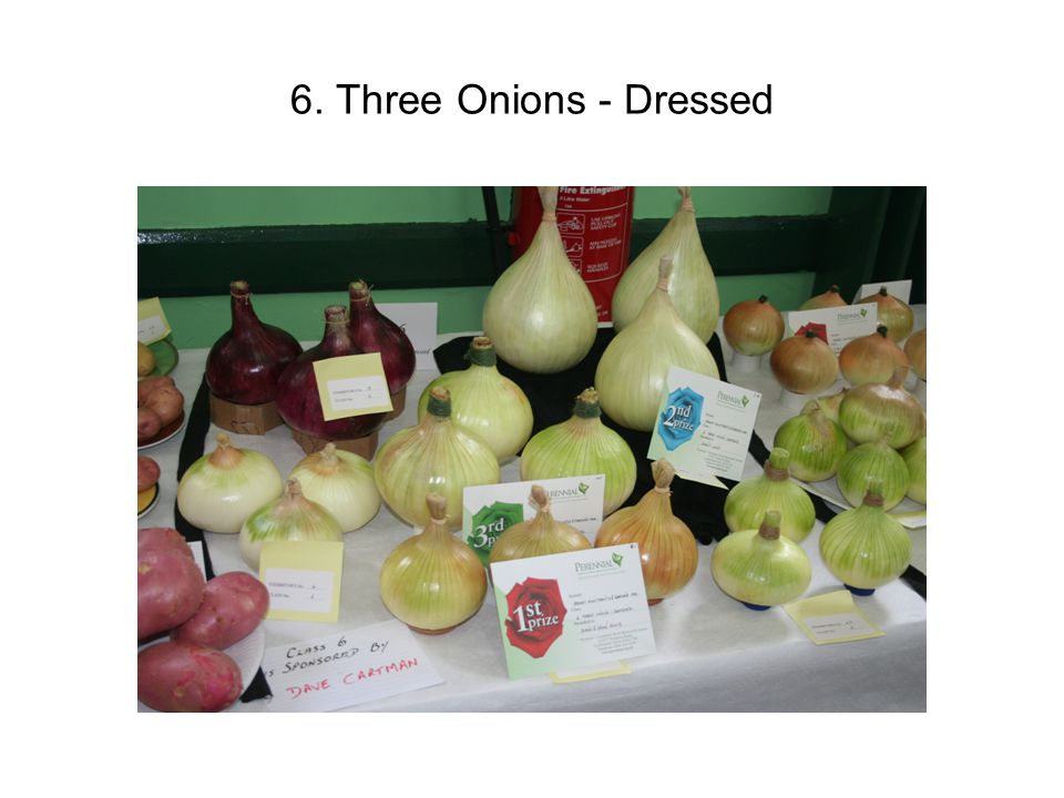 6. Three Onions - Dressed
