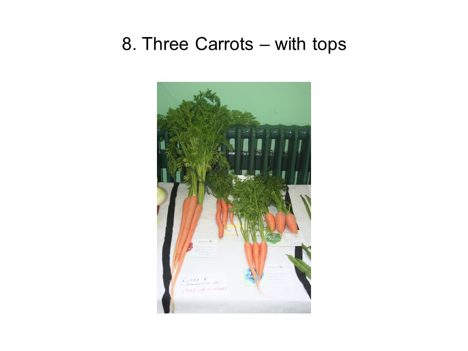 8. Three Carrots – with tops