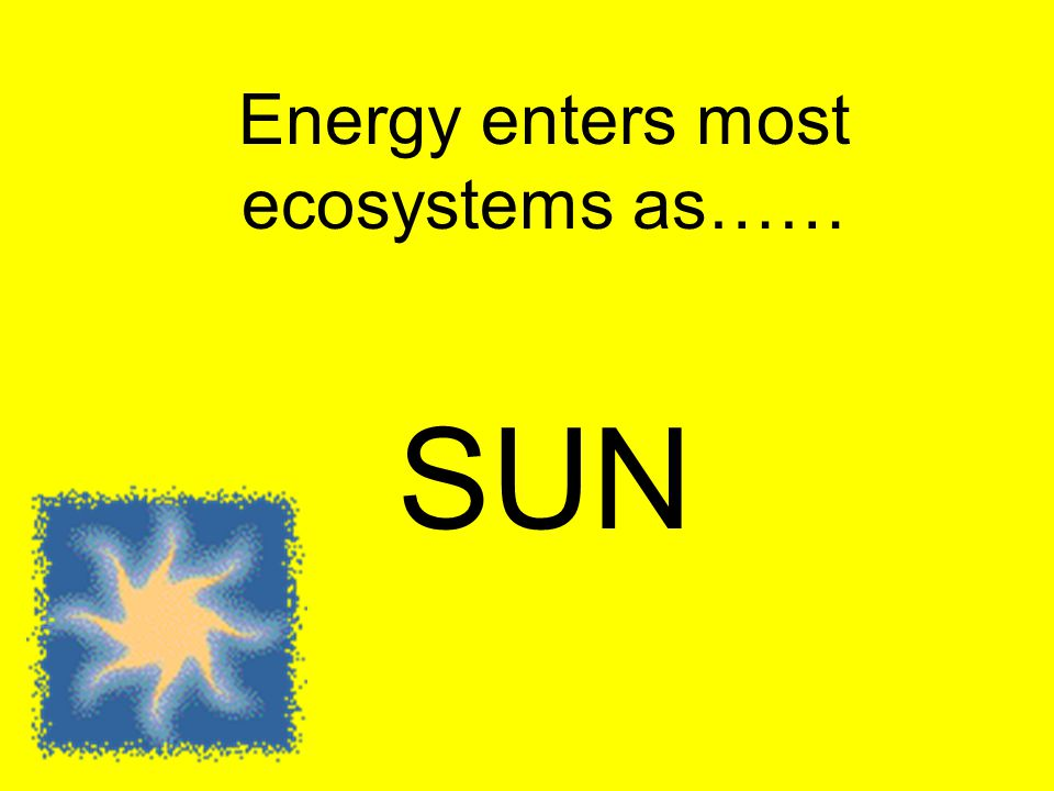 Energy enters most ecosystems as…… SUN
