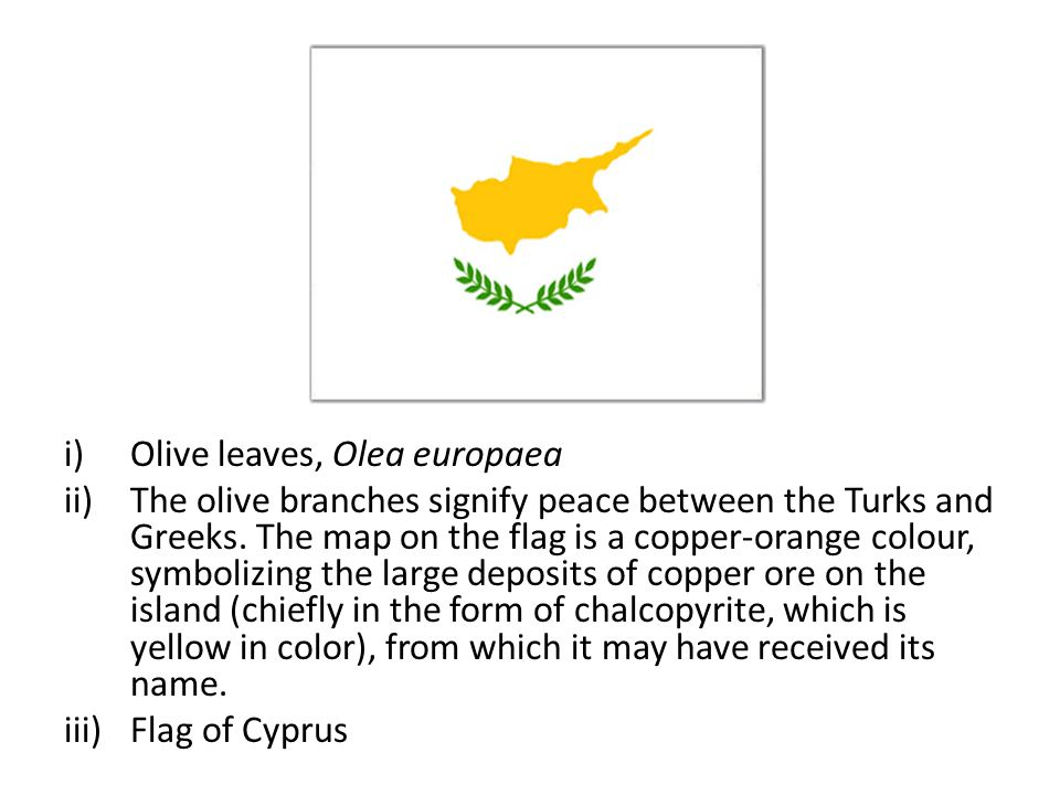 i)Olive leaves, Olea europaea ii)The olive branches signify peace between the Turks and Greeks.