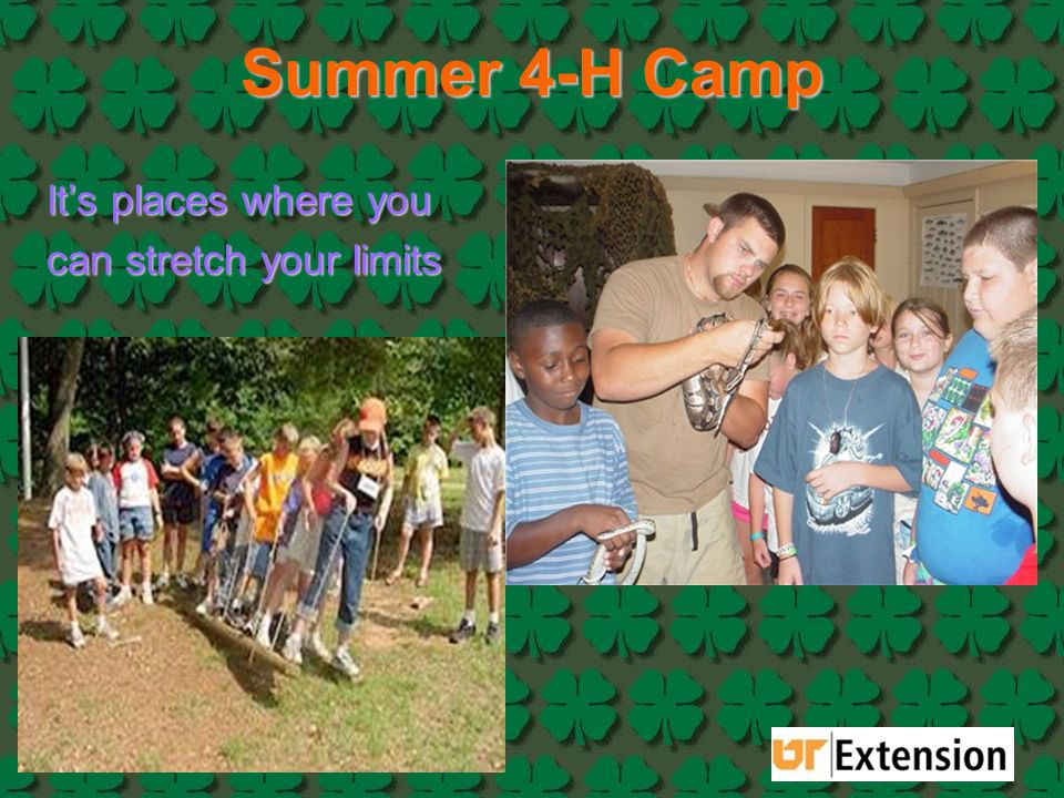 Summer 4-H Camp It's places where you can stretch your limits