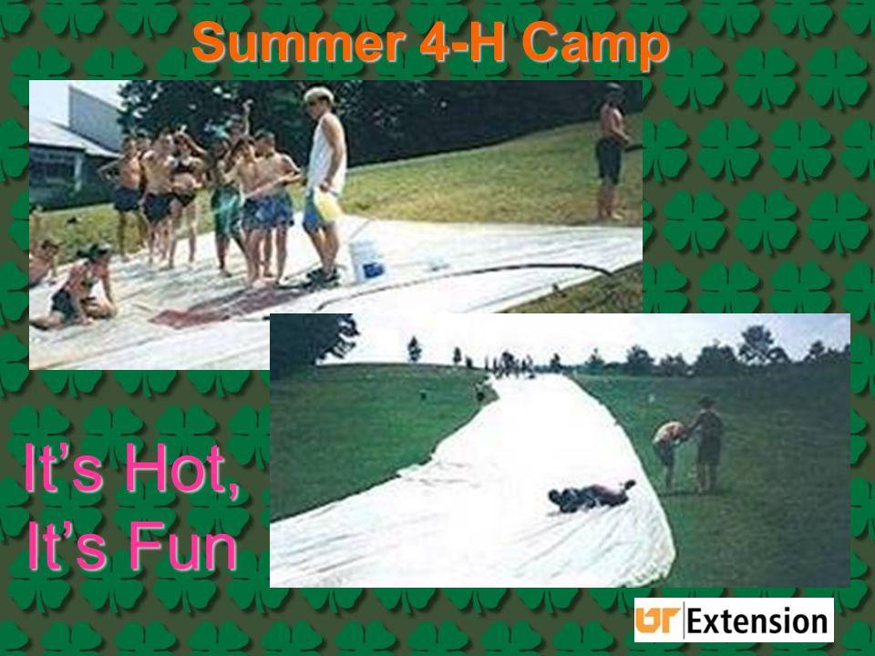 Summer 4-H Camp It's Hot, It's Fun