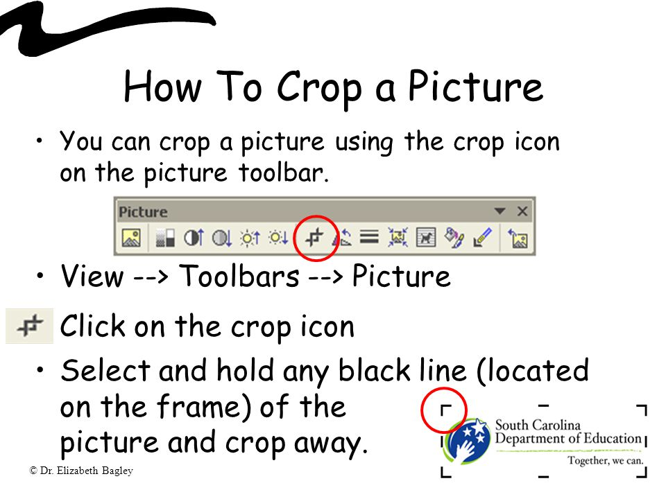 © Dr. Elizabeth Bagley How To Crop a Picture You can crop a picture using the crop icon on the picture toolbar. View --> Toolbars --> Picture Click on