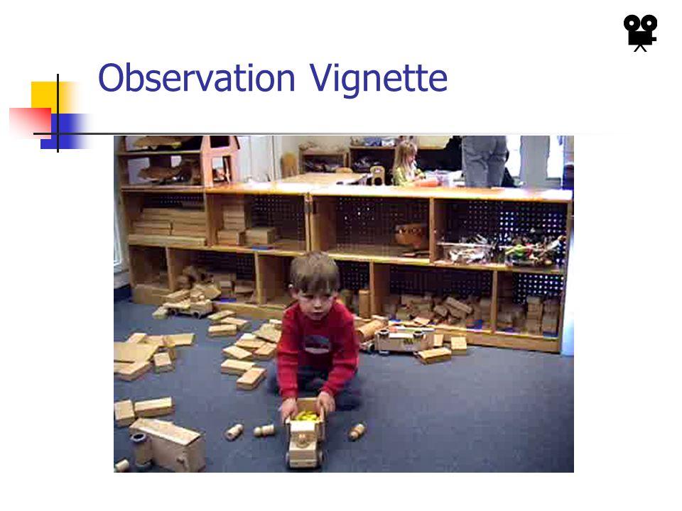 Observation Vignette