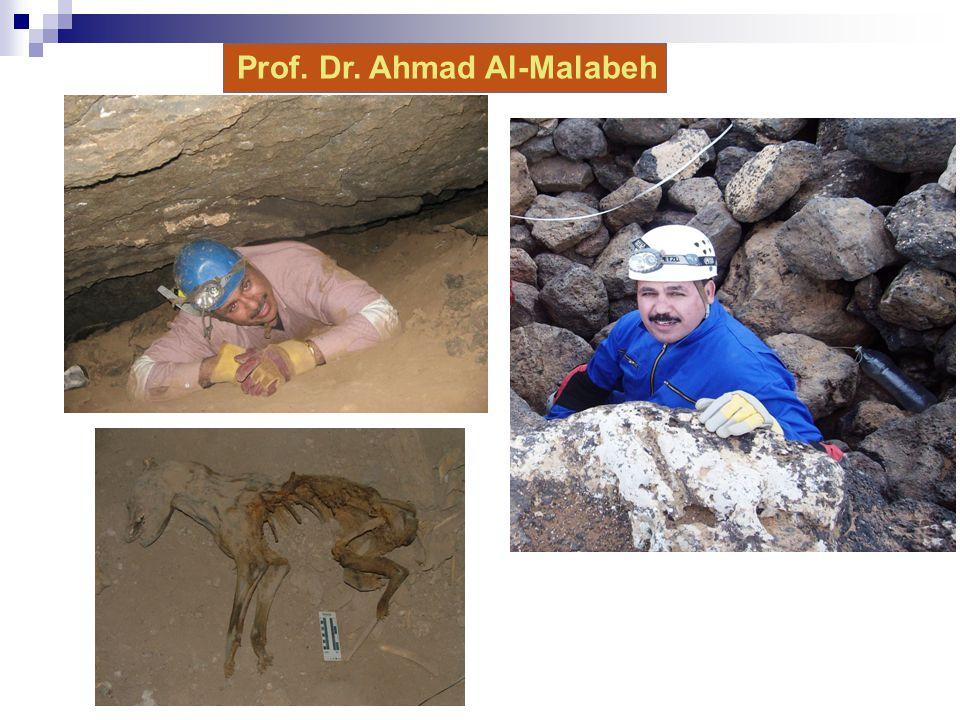 Prof. Dr. Ahmad Al-Malabeh