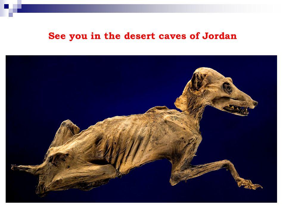 See you in the desert caves of Jordan