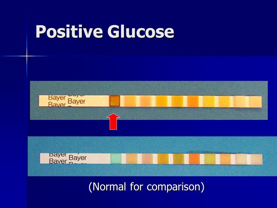 Positive Glucose (Normal for comparison)