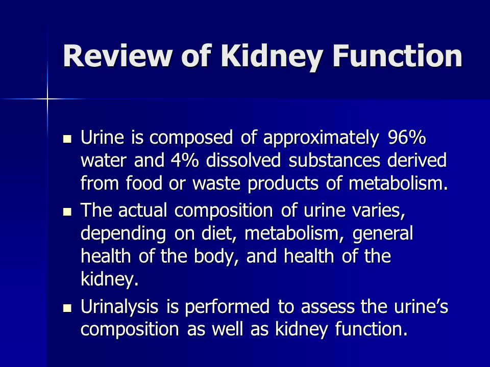 Review of Kidney Function Urine is composed of approximately 96% water and 4% dissolved substances derived from food or waste products of metabolism.