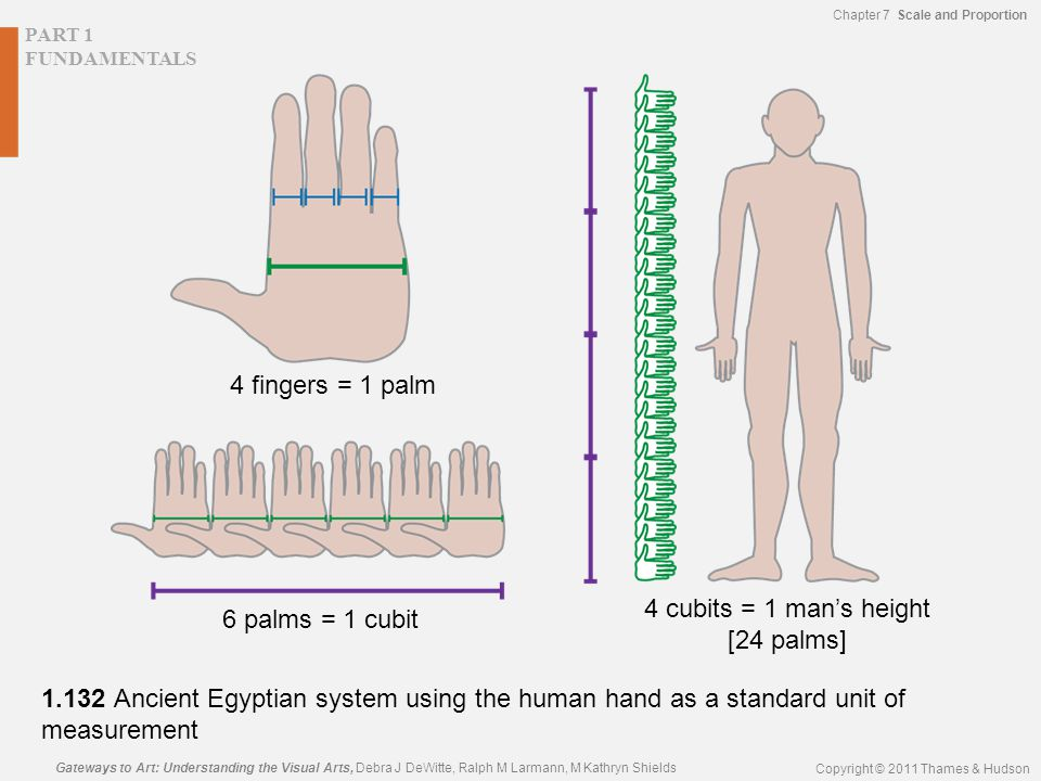 PART 1 FUNDAMENTALS Gateways to Art: Understanding the Visual Arts, Debra J DeWitte, Ralph M Larmann, M Kathryn Shields Copyright © 2011 Thames & Hudson Chapter 7 Scale and Proportion 1.132 Ancient Egyptian system using the human hand as a standard unit of measurement 6 palms = 1 cubit 4 cubits = 1 man's height [24 palms] 4 fingers = 1 palm