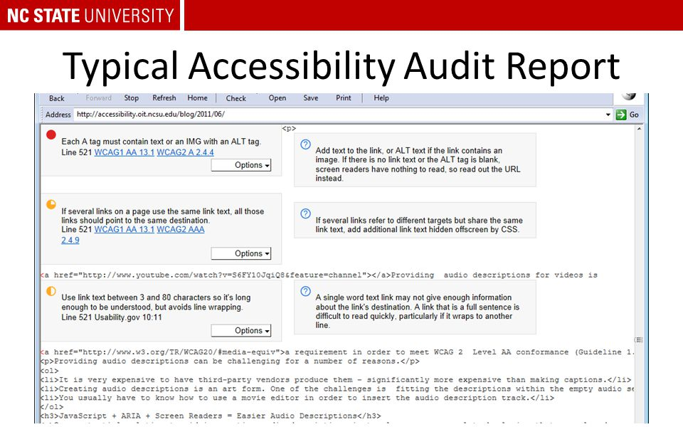 Typical Accessibility Audit Report