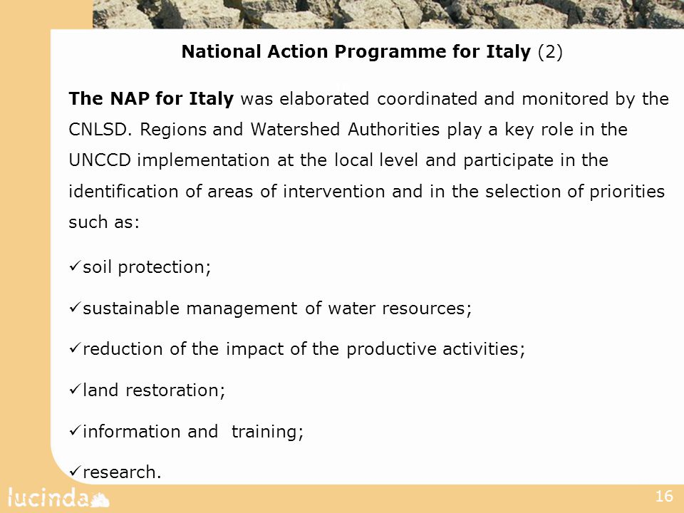 16 National Action Programme for Italy (2) The NAP for Italy was elaborated coordinated and monitored by the CNLSD.