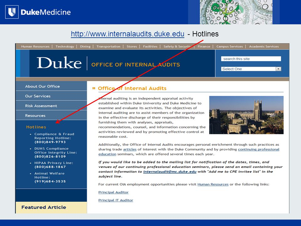 All Rights Reserved, Duke Medicine 2007 http://www.internalaudits.duke.eduhttp://www.internalaudits.duke.edu - Hotlines