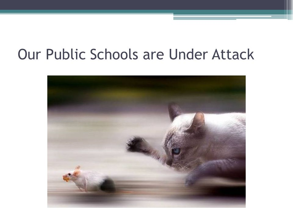 Our Public Schools are Under Attack