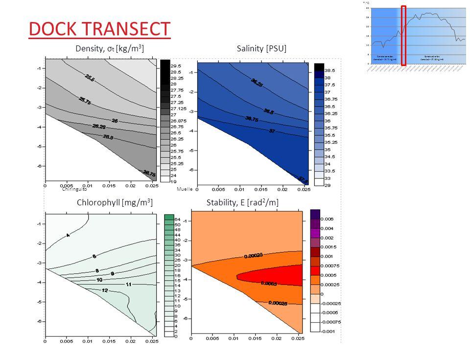 DOCK TRANSECT Density, σ t [kg/m 3 ] Salinity [PSU] ChiringuitoMuelle Chlorophyll [mg/m 3 ]Stability, E [rad 2 /m]