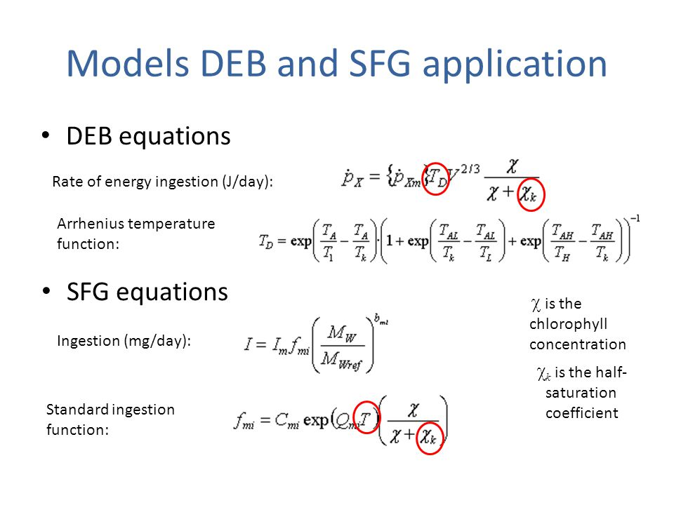 Models DEB and SFG application DEB equations Rate of energy ingestion (J/day): Arrhenius temperature function: SFG equations Ingestion (mg/day): is the chlorophyll concentration Standard ingestion function: k is the half- saturation coefficient