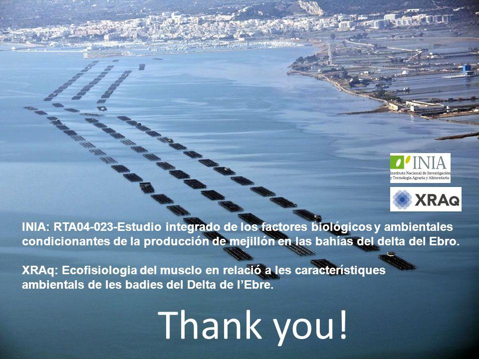 Thank you! INIA: RTA04-023-Estudio integrado de los factores biológicos y ambientales condicionantes de la producción de mejillón en las bahías del de