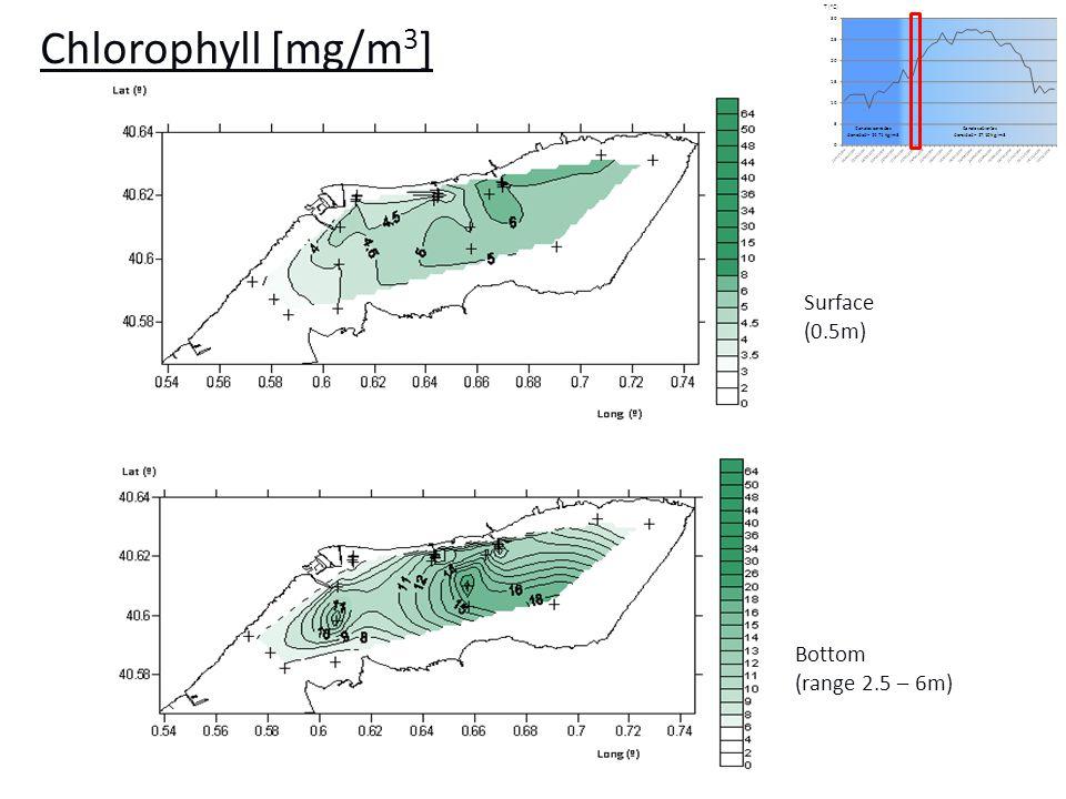 [µg/L] CR [L/h] Datos de campo Datos in situ simulados (Galimany et al., 2009) Winter Spring Summer Autumn Field data In situ simulated data (Galimany et al.) Half-saturation coefficient