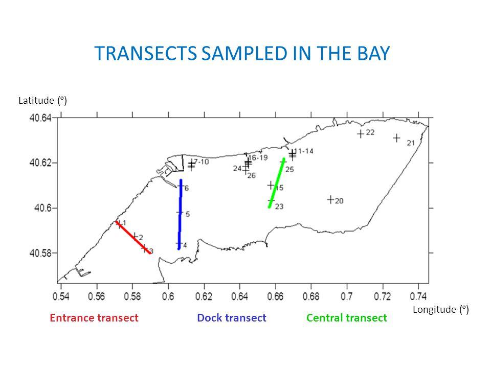 ENTRANCE TRANSECT Density, σ t [kg/m 3 ] Salinity [PSU] SerramarFaro Mitad boca Chlorophyll [mg/m 3 ] Stability, E [rad 2 /m]