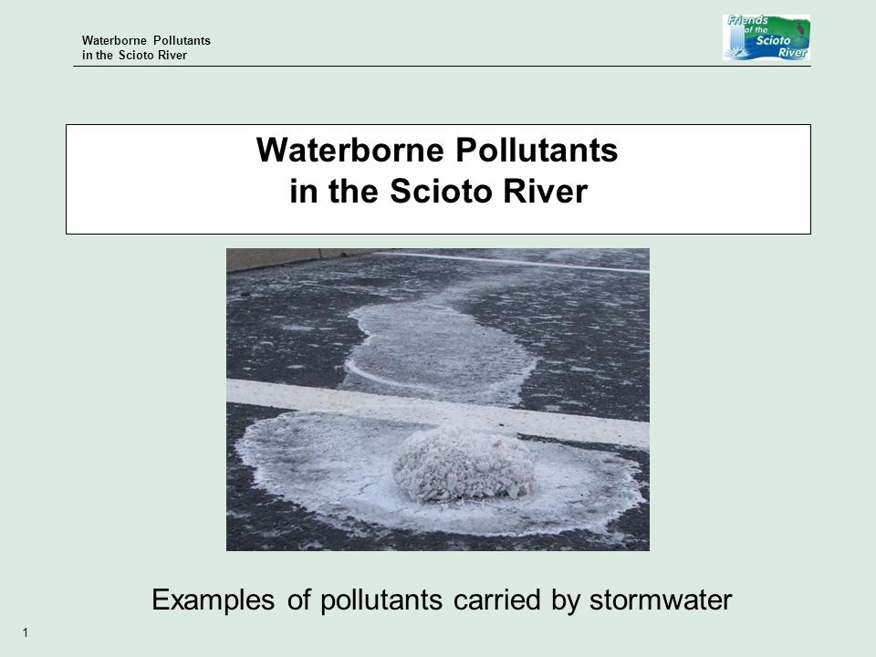 Waterborne Pollutants in the Scioto River 1 Examples of pollutants carried by stormwater Waterborne Pollutants in the Scioto River