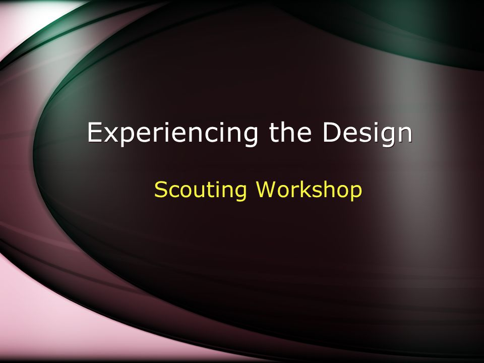 Experiencing the Design Scouting Workshop