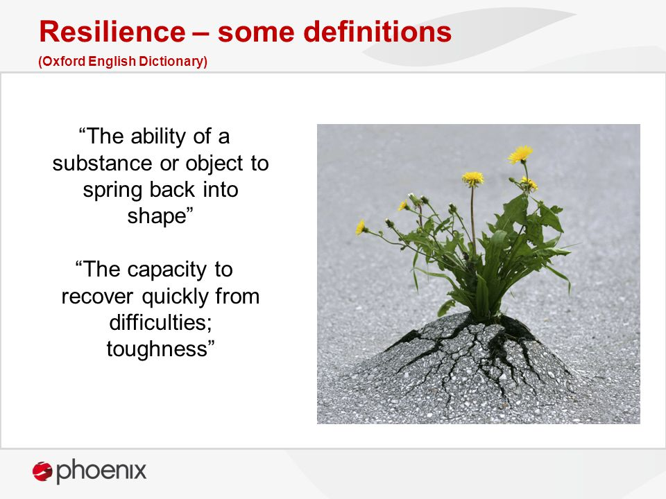 """The ability of a substance or object to spring back into shape"" ""The capacity to recover quickly from difficulties; toughness"" Resilience – some defi"