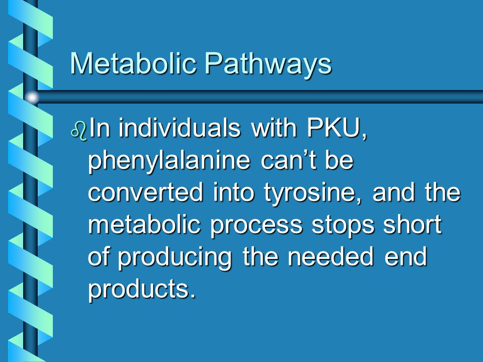 Metabolic Pathways b In individuals with PKU, phenylalanine can't be converted into tyrosine, and the metabolic process stops short of producing the n