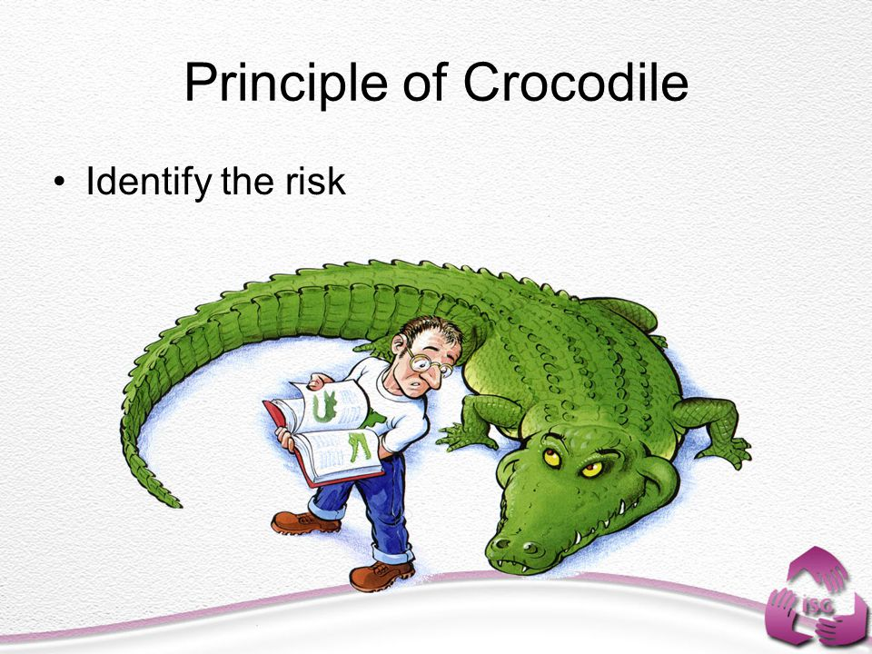Principle of Crocodile Identify the risk