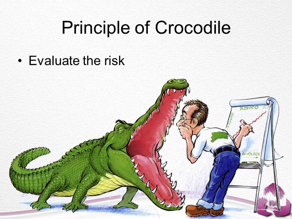 Principle of Crocodile Evaluate the risk