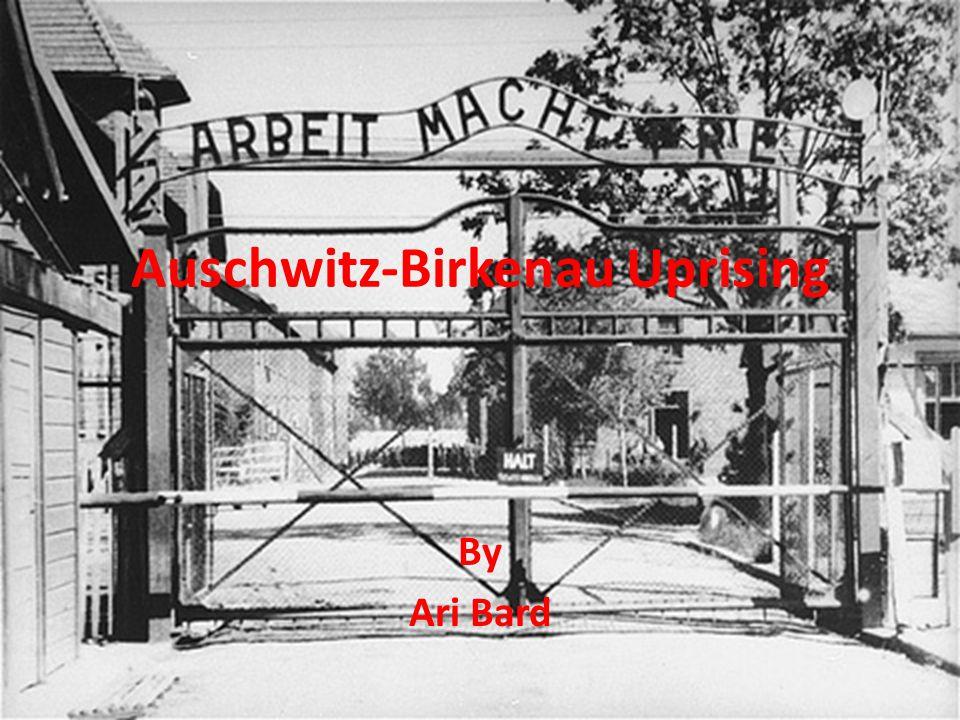 Auschwitz-Birkenau Uprising By Ari Bard