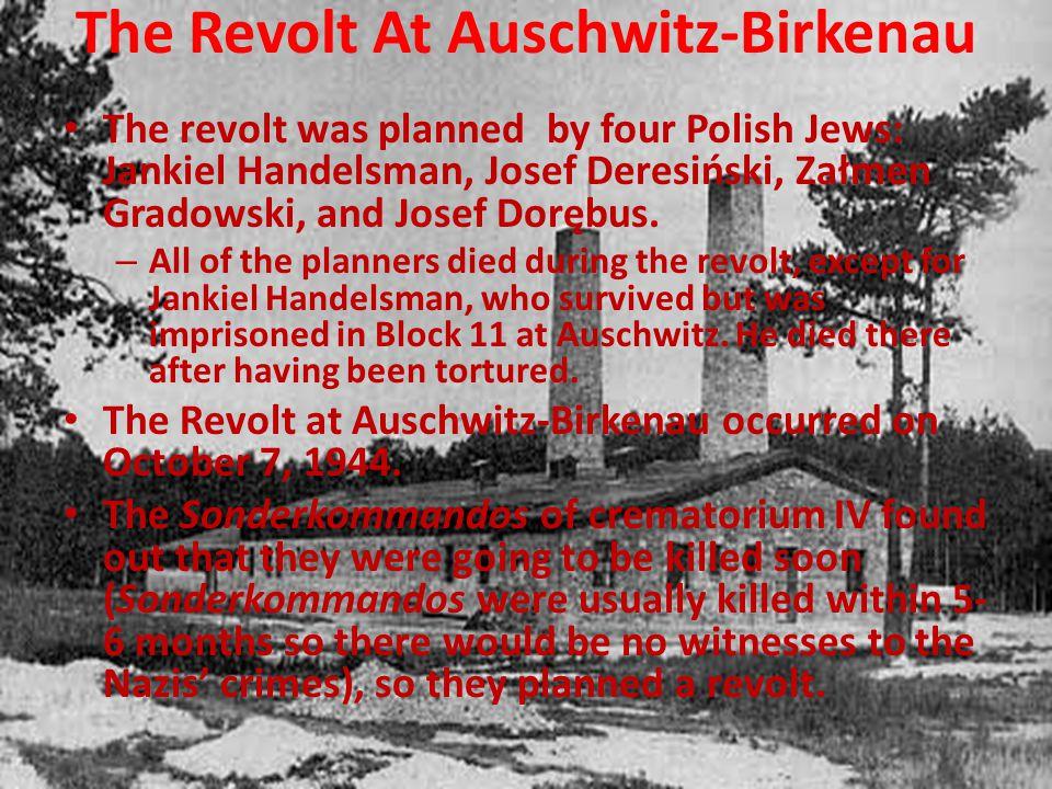 The Revolt At Auschwitz-Birkenau The revolt was planned by four Polish Jews: Jankiel Handelsman, Josef Deresiński, Załmen Gradowski, and Josef Dorębus.