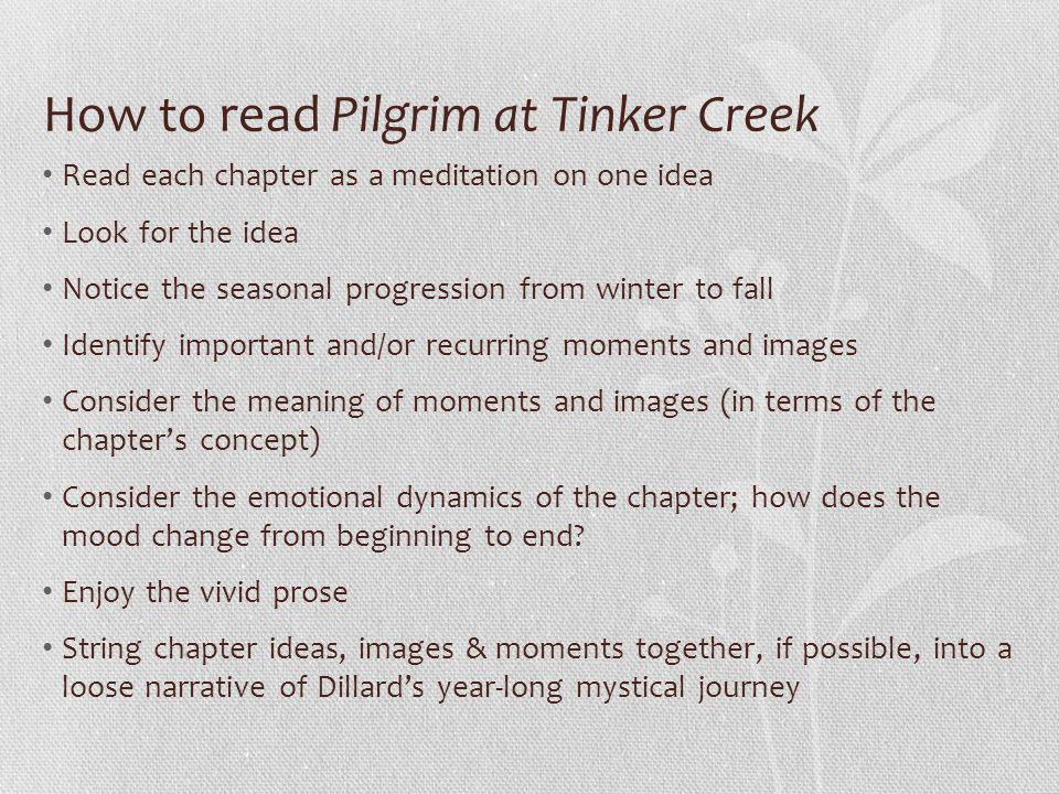 How to read Pilgrim at Tinker Creek Read each chapter as a meditation on one idea Look for the idea Notice the seasonal progression from winter to fall Identify important and/or recurring moments and images Consider the meaning of moments and images (in terms of the chapter's concept) Consider the emotional dynamics of the chapter; how does the mood change from beginning to end.