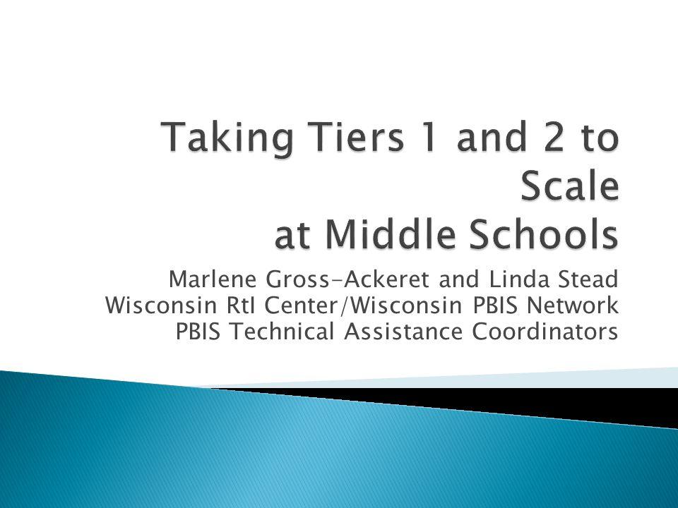 Marlene Gross-Ackeret and Linda Stead Wisconsin RtI Center/Wisconsin PBIS Network PBIS Technical Assistance Coordinators