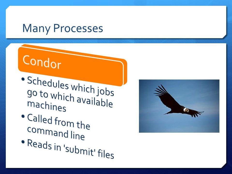 Many Processes