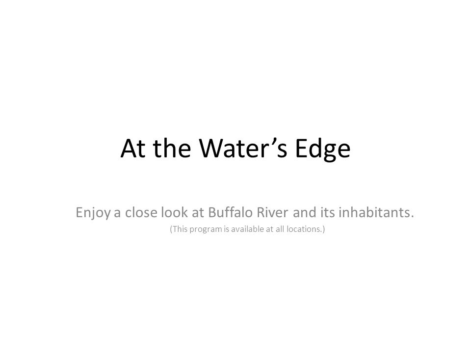 At the Water's Edge Enjoy a close look at Buffalo River and its inhabitants. (This program is available at all locations.)