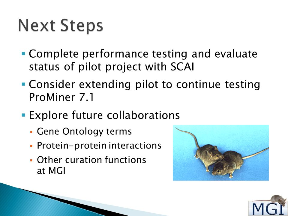  Complete performance testing and evaluate status of pilot project with SCAI  Consider extending pilot to continue testing ProMiner 7.1  Explore future collaborations  Gene Ontology terms  Protein-protein interactions  Other curation functions at MGI