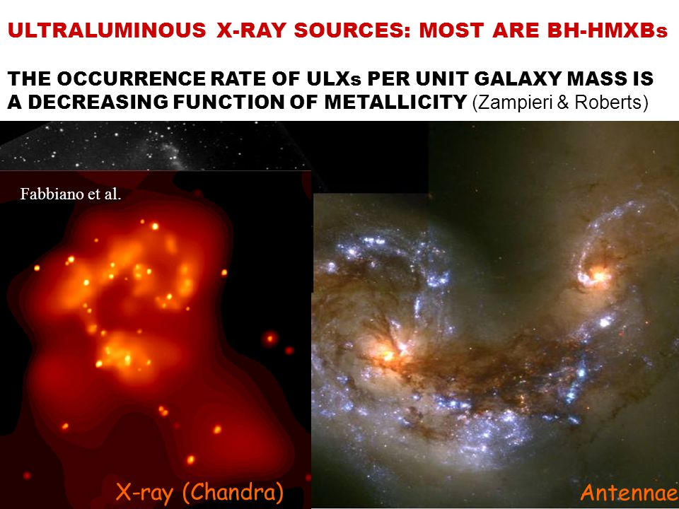 ULTRALUMINOUS X-RAY SOURCES: MOST ARE BH-HMXBs THE OCCURRENCE RATE OF ULXs PER UNIT GALAXY MASS IS A DECREASING FUNCTION OF METALLICITY (Zampieri & Roberts) X-ray (Chandra) Antennae Fabbiano et al.