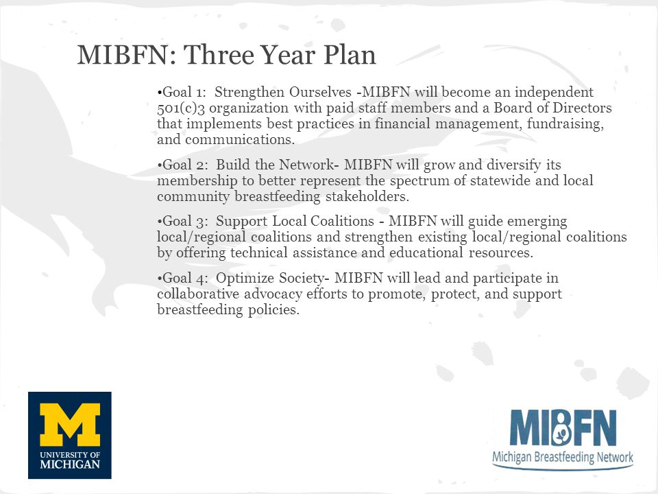 MIBFN: Three Year Plan Goal 1: Strengthen Ourselves -MIBFN will become an independent 501(c)3 organization with paid staff members and a Board of Directors that implements best practices in financial management, fundraising, and communications.