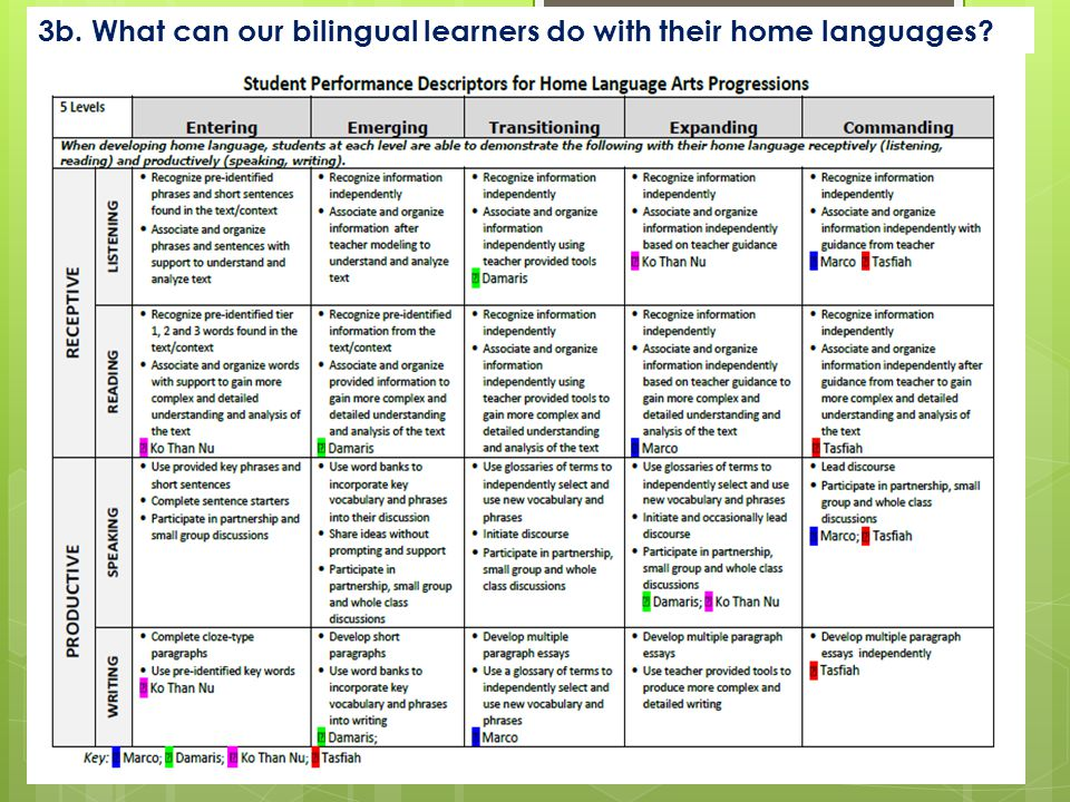 3b. What can our bilingual learners do with their home languages