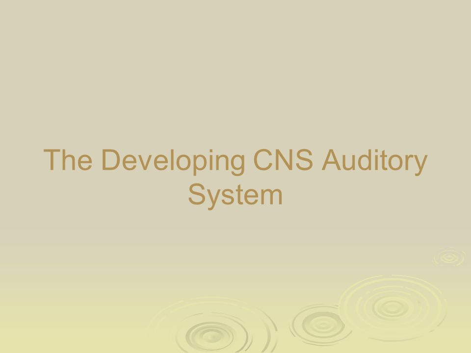The Developing CNS Auditory System