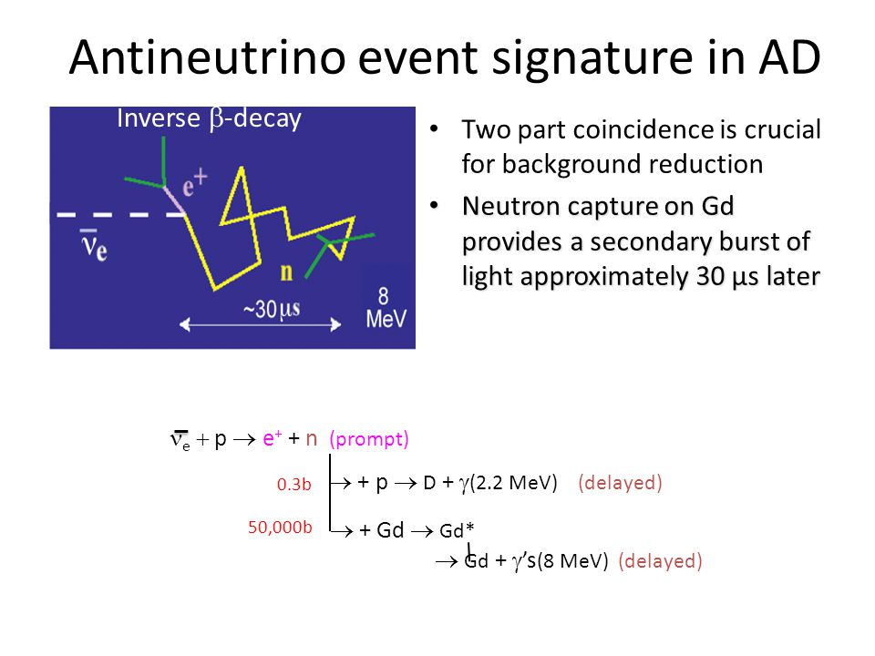 Antineutrino event signature in AD Two part coincidence is crucial for background reduction Neutron capture on Gd provides a secondary burst of light approximately 30 μs later Neutron capture on Gd provides a secondary burst of light approximately 30 μs later Inverse  -decay e  p  e + + n (prompt)  + p  D +  (2.2 MeV) (delayed)  + Gd  Gd*  Gd +  's (8 MeV) (delayed) 0.3b 50,000b