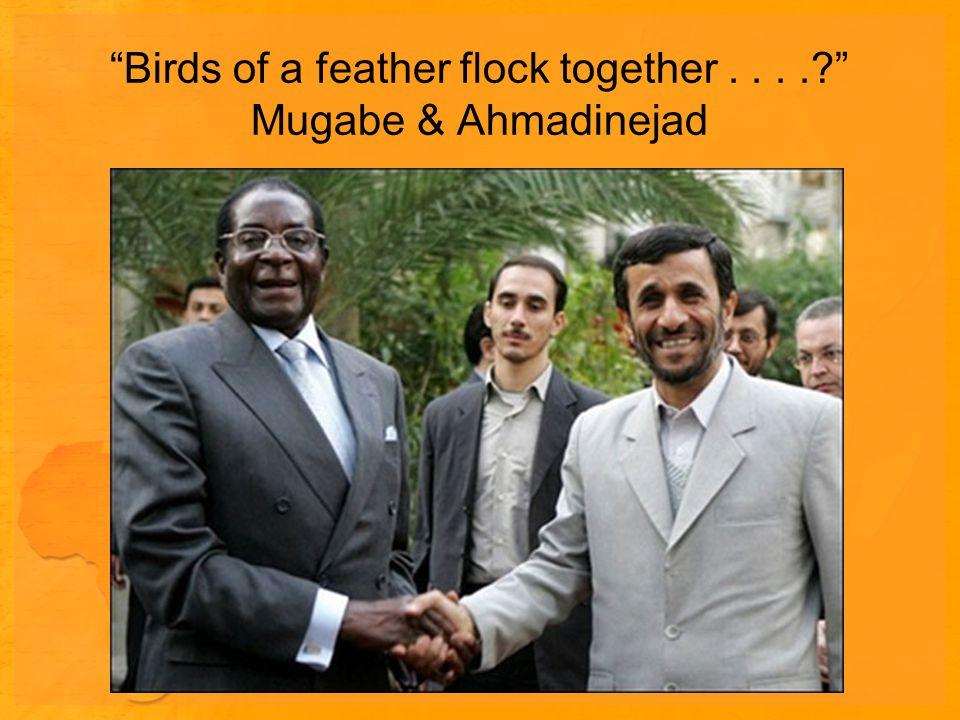Birds of a feather flock together.... Mugabe & Ahmadinejad