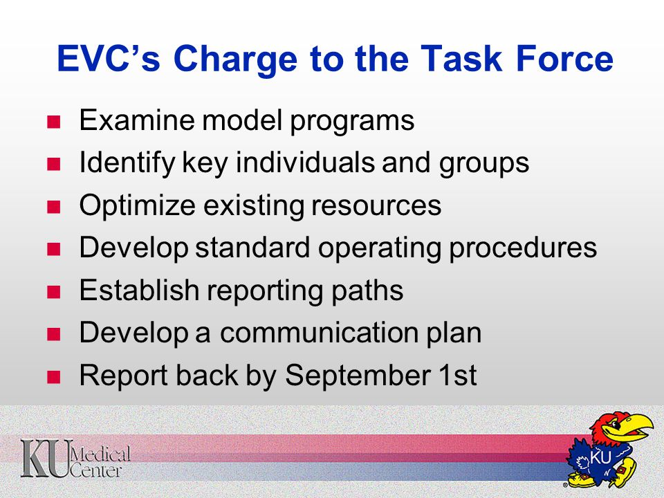 EVC's Charge to the Task Force Examine model programs Identify key individuals and groups Optimize existing resources Develop standard operating procedures Establish reporting paths Develop a communication plan Report back by September 1st