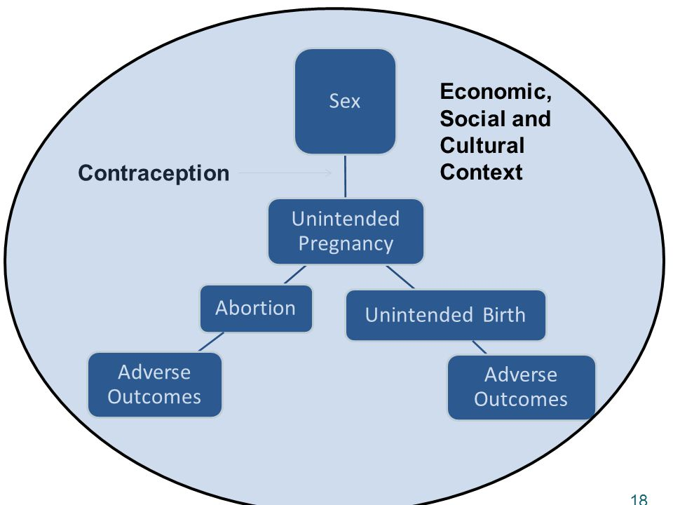 Unintended Pregnancy Sex Unintended Birth Adverse Outcomes Abortion Adverse Outcomes 18 Contraception Economic, Social and Cultural Context