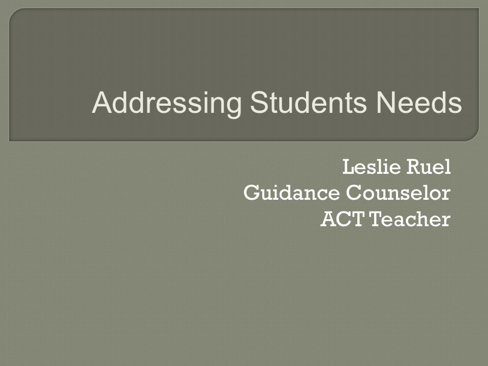Leslie Ruel Guidance Counselor ACT Teacher Addressing Students Needs