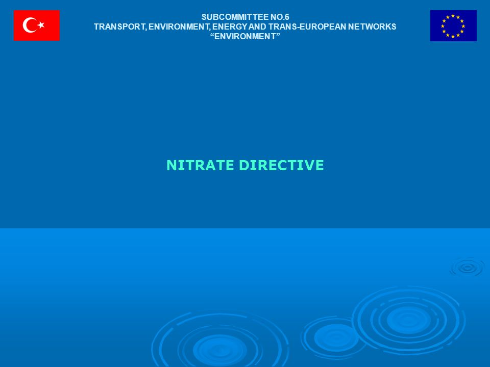 "SUBCOMMITTEE NO.6 TRANSPORT, ENVIRONMENT, ENERGY AND TRANS-EUROPEAN NETWORKS ""ENVIRONMENT"" NITRATE DIRECTIVE"