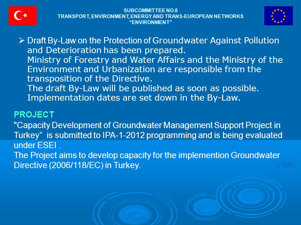 "SUBCOMMITTEE NO.6 TRANSPORT, ENVIRONMENT, ENERGY AND TRANS-EUROPEAN NETWORKS ""ENVIRONMENT""  Draft By-Law on the Protection of Groundwater Against Pol"