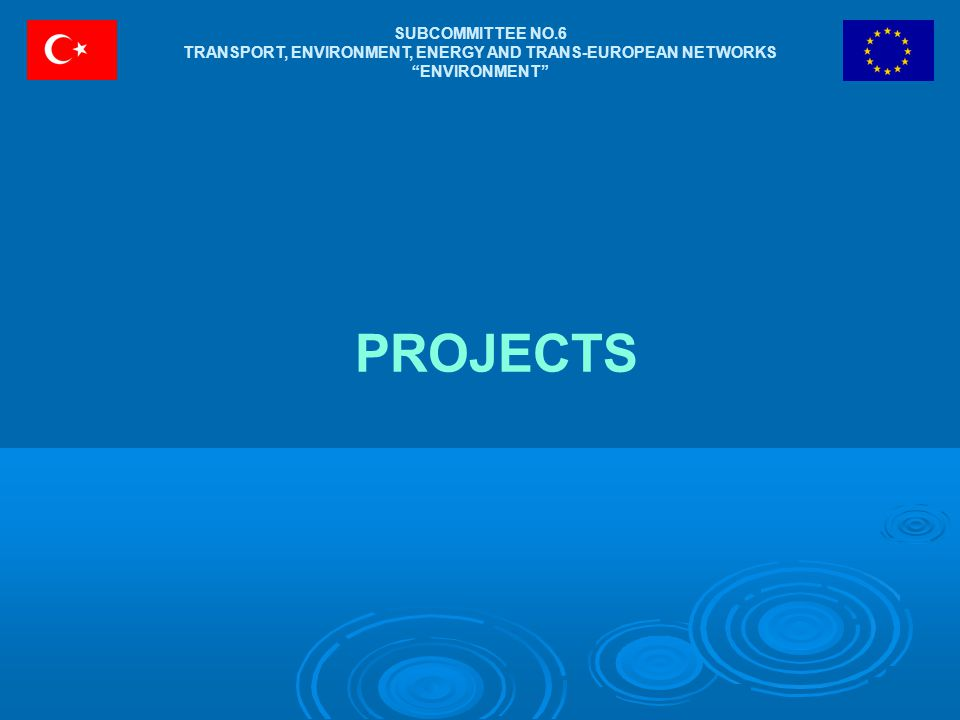 SUBCOMMITTEE NO.6 TRANSPORT, ENVIRONMENT, ENERGY AND TRANS-EUROPEAN NETWORKS ENVIRONMENT PROJECTS