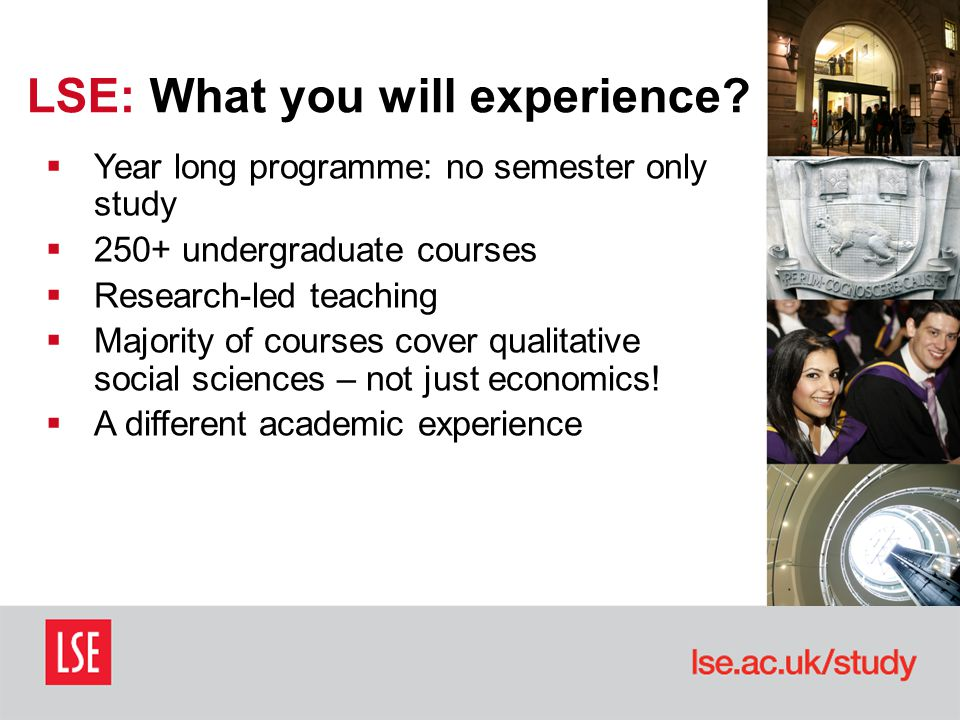  Year long programme: no semester only study  250+ undergraduate courses  Research-led teaching  Majority of courses cover qualitative social sciences – not just economics.
